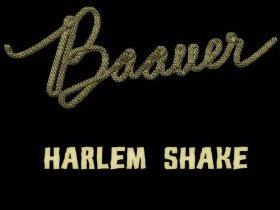 【视频】神曲再临:哈林摇(Harlem Shake)附下载